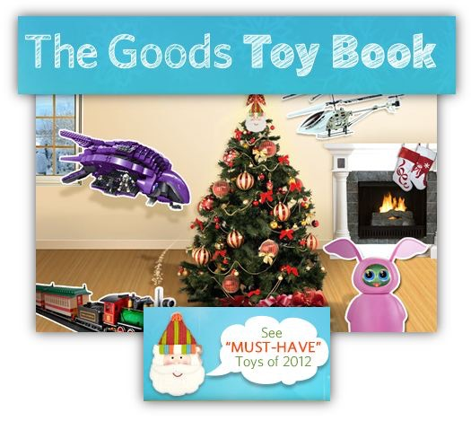 Toys For Boys Book : Groupon toy book toys for boys girls and everyone else