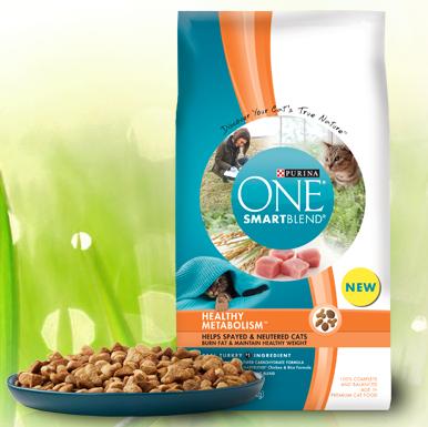 cat-food-sample