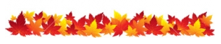 fall-leaves-boarder