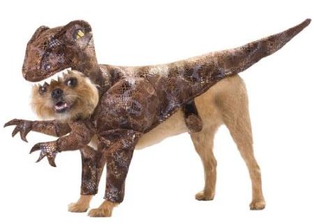 Dog Shark Halloween Costume Dog Halloween Costumes