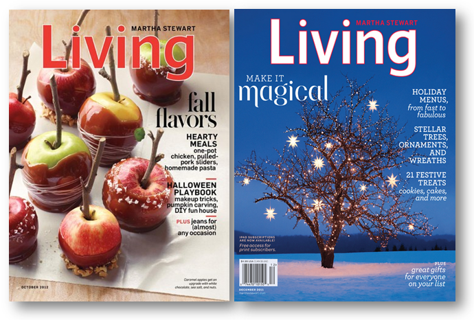 martha-stewart-living-magazine-fall