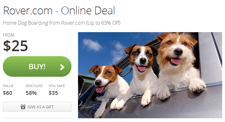 rover-groupon-deal