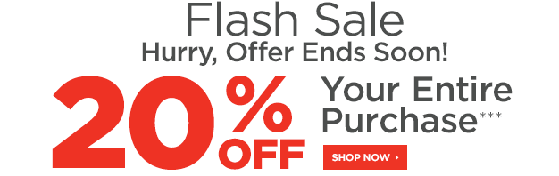 sports-authority-flash-sale