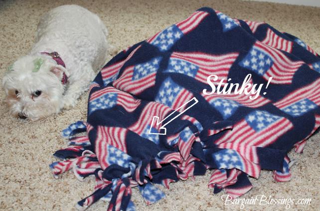 stinky-blanket