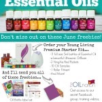 Cyber Monday Essential Oils Deal: Starter Kit + Over $50 in Freebies {Today Only}!