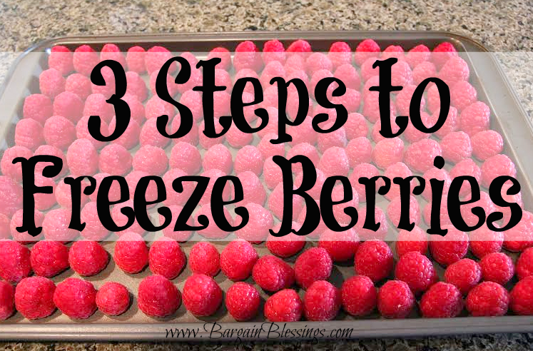 3-steps-to-freeze-berries