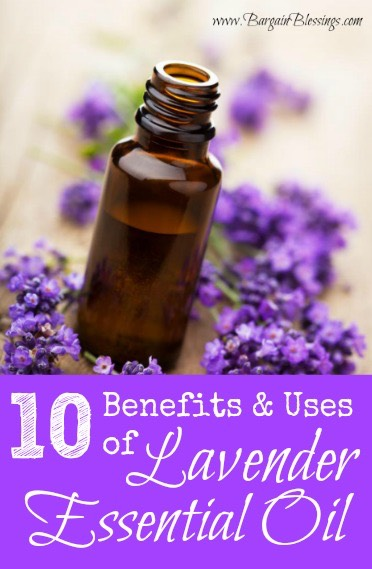 uses-for-lavender-essential-oil
