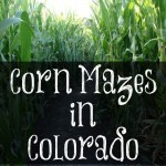 Corn Mazes in Colorado 2014