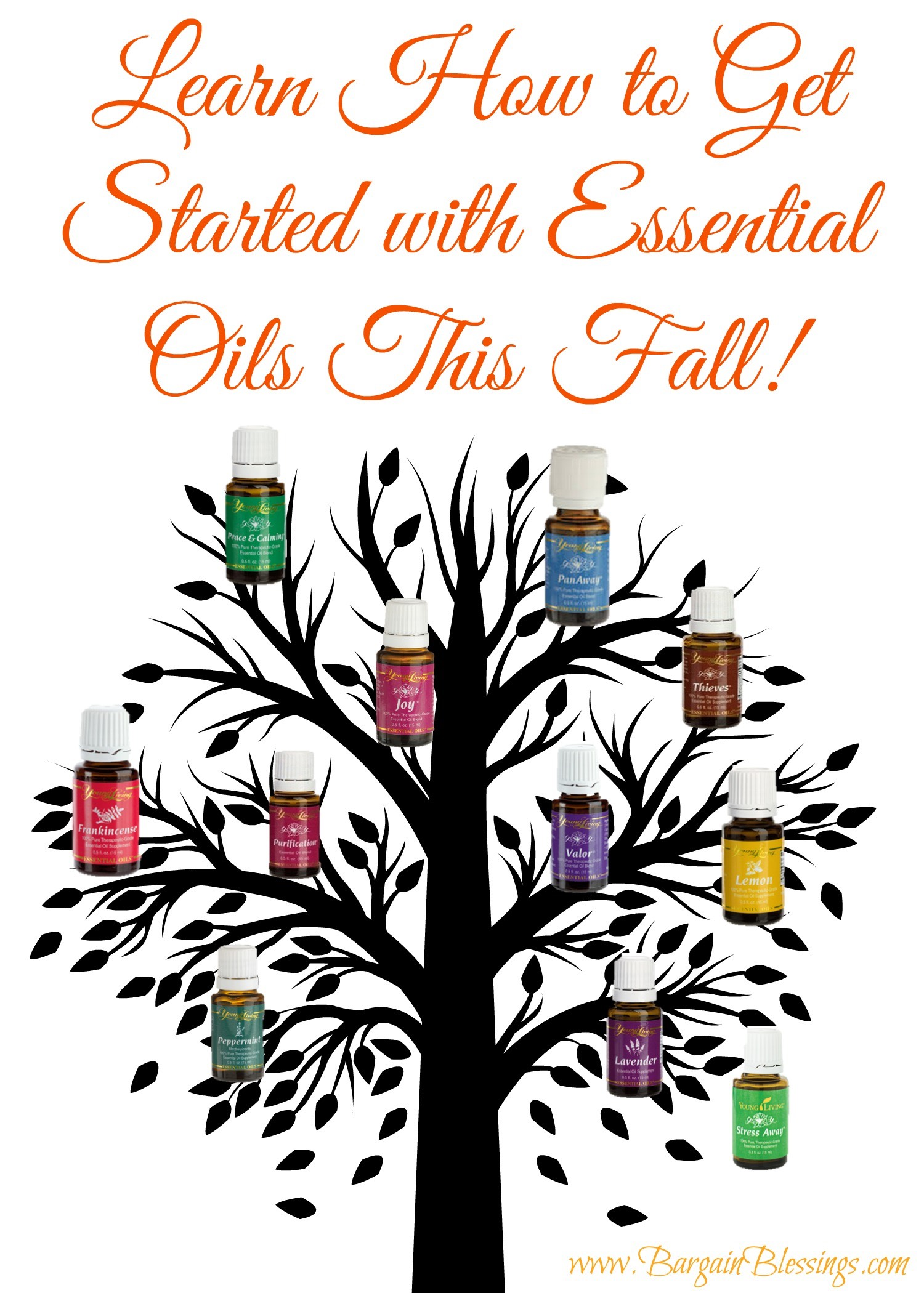 get-started-with-essential-oils-this fall