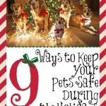 9 Ways to Keep Your Pets Safe During the Holidays