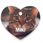 Custom Pet Tag from Shutterfly Only $3.99 Shipped!
